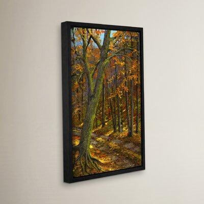 Road in the Woods Framed Painting Print