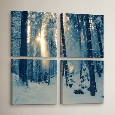 Winter Light 4 Piece Photographic Print on Wrapped Canvas Set Size: 36