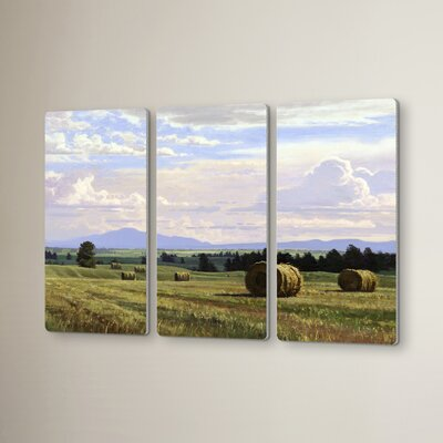 Fresh Cut Hay 3 Piece Painting Print Set