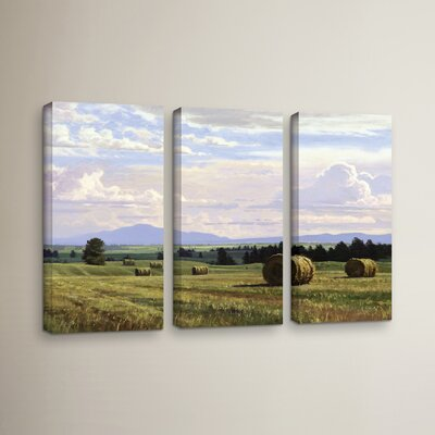 Fresh Cut Hay 3 Piece Photographic Print on Wrapped Canvas Set