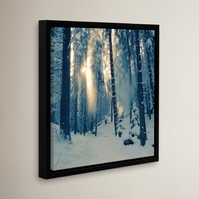 Winter Light Framed Photographic Print