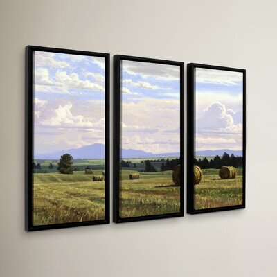 Fresh Cut Hay 3 Piece Framed Photographic Print Set