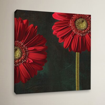 Gerbera and Playful Mood Photographic Print on Wrapped Canvas Size: 10