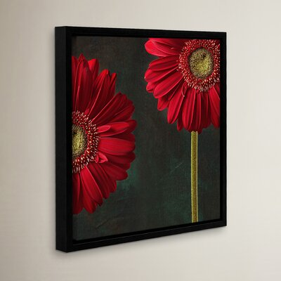 Gerbera and Playful Mood Framed Photographic Print
