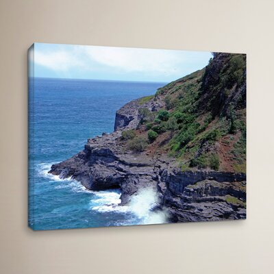 Sea Cave and Nesting Birds Photographic Print on Wrapped Canvas Size: 14