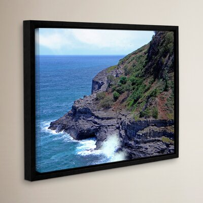 Sea Cave and Nesting Birds Framed Photographic Print on Wrapped Canvas Size: 14