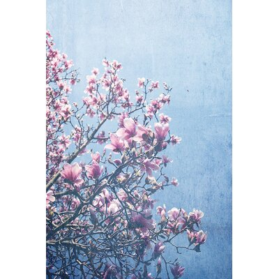 She Bloomed Everywhere She Went by Olivia Joy Photographic Print on Wrapped Canvas