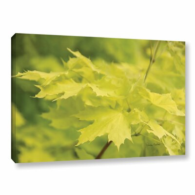 Spring Leaves I Photographic Print on Gallery Wrapped Canvas