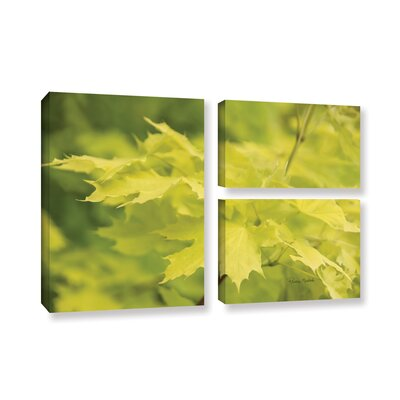 Spring Leaves I 3 Piece Photographic Print on Gallery Wrapped Canvas Set
