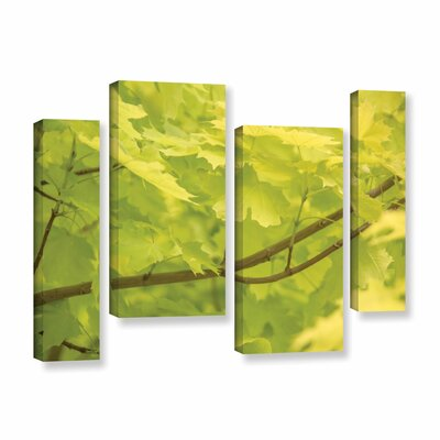 Spring Leaves II 4 Piece Photographic Print on Gallery Wrapped Canvas Set