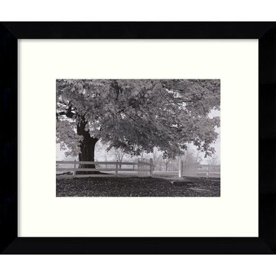 Autumn Morning Framed Photographic Print