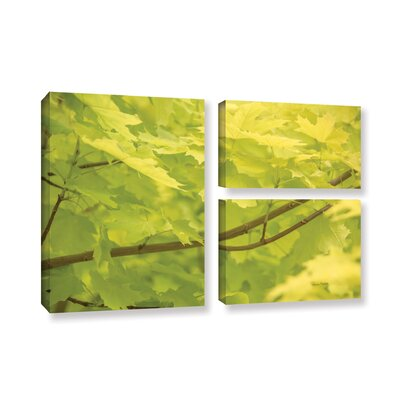Spring Leaves II 3 Piece Photographic Print on Canvas Set