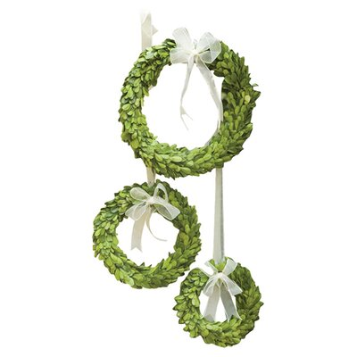 Preserved Greens 3 Piece Wreath Set Color: White