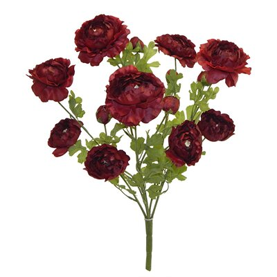 Tall Ranunculus Bush Color: Red