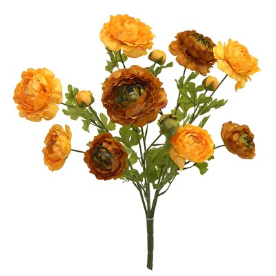 Tall Ranunculus Bush Color: Green / Yellow