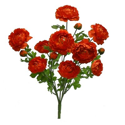 Tall Ranunculus Bush Color: Orange
