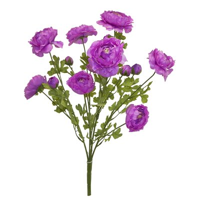 Tall Ranunculus Bush Color: Lavender
