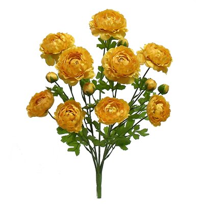 Tall Ranunculus Bush Color: Yellow