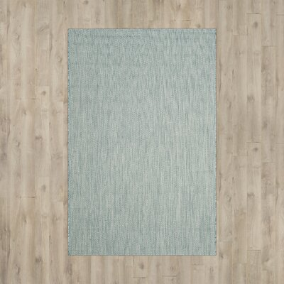 Adelia Aqua / Gray Indoor/Outdoor Area Rug Rug Size: 53 x 77