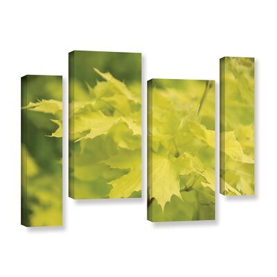 Spring Leaves I 4 Piece Photographic Print on Gallery Wrapped Canvas Set