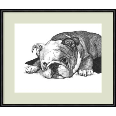 Gracie the Bulldog Framed Graphic Art