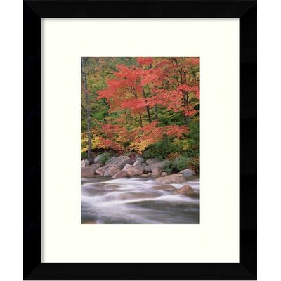 Autumn along Swift River, White Mountains National Forest, New Hampshire II Framed Graphic Art
