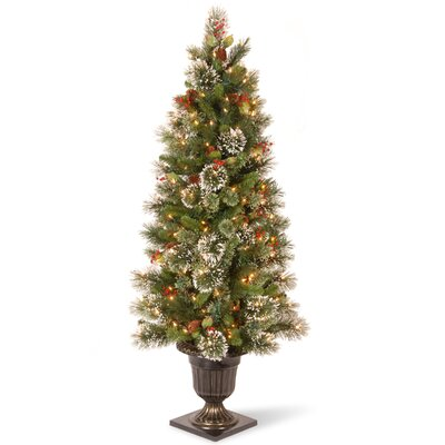 Pre-Lit 5' Faux Wintry Pine Tree