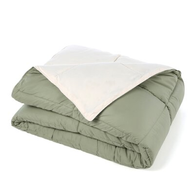Jeffries All Season Reversible Down Alternative Comforter Color: Ivory / Sage, Size: Full / Queen