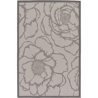 Viola Gray Outdoor Area Rug Rug Size: 5'3