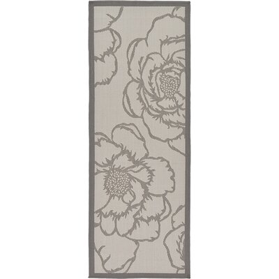 Viola Gray Outdoor Area Rug Rug Size: Runner 2'2