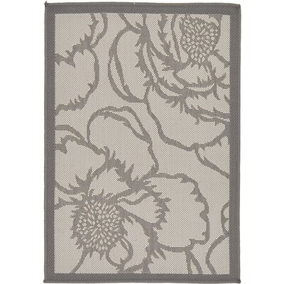 Viola Gray Outdoor Area Rug Rug Size: 2'2
