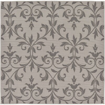 Walker Gray Outdoor Area Rug Rug Size: Square 6'