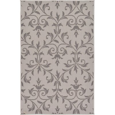Walker Gray Outdoor Area Rug Rug Size: 3'3