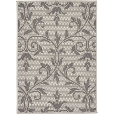 Walker Gray Outdoor Area Rug Rug Size: 2'2