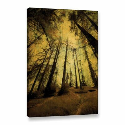 'Meander 7' Photographic Print on Wrapped Canvas Size: 18