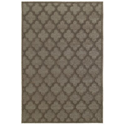 Lacon Brown Area Rug Rug Size: Rectangle 52 x 76