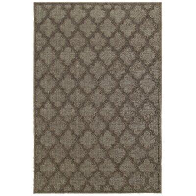 Lacon Brown Area Rug Rug Size: 66 x 96