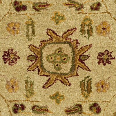 Dunstable Ivory/Green Area Rug Rug Size: Round 6'