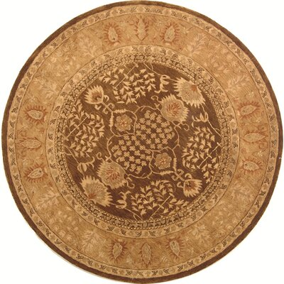 Ladd Brown/Gold Area Rug Rug Size: Round 6