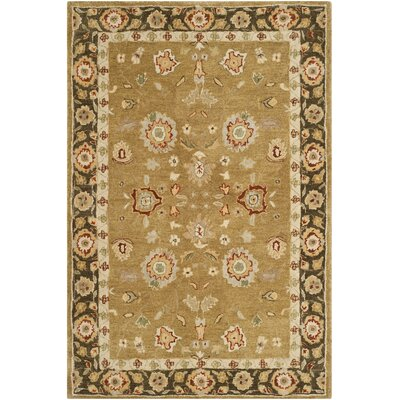Dunstable Gold / Chocolate Rug Rug Size: 56 x 86