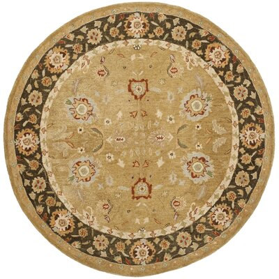 Ladd Gold / Chocolate Rug Rug Size: Round 6