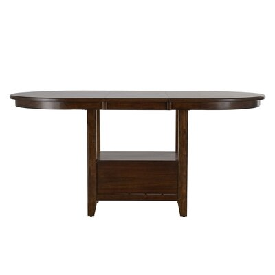 Ellicott Counter Height Extendable Dining Table