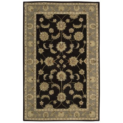 Donohoe Black/Green Area Rug Rug Size: 5 x 8