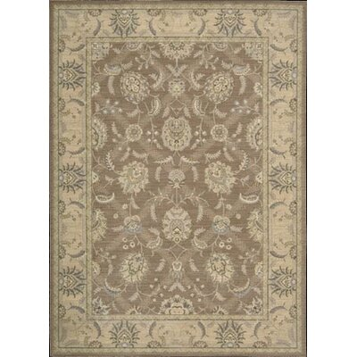 Dowdell Mocca Area Rug Rug Size: Rectangle 36 x 56