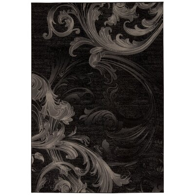 Shelley Black/Gray Area Rug Rug Size: Rectangle 53 x 74