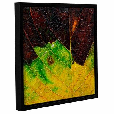 Axioma VIII Framed Painting Print Size: 10