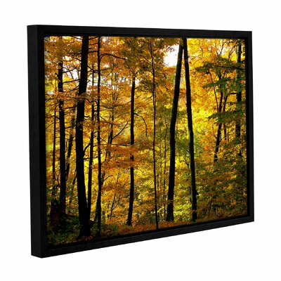 Fall Colors Framed Photographic Print on Canvas Size: 14