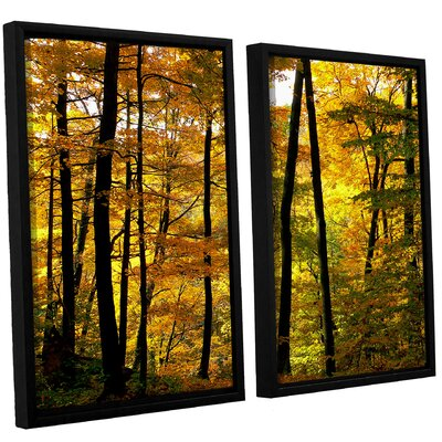 Fall Colors 2 Piece Framed Photographic Print on Canvas Set