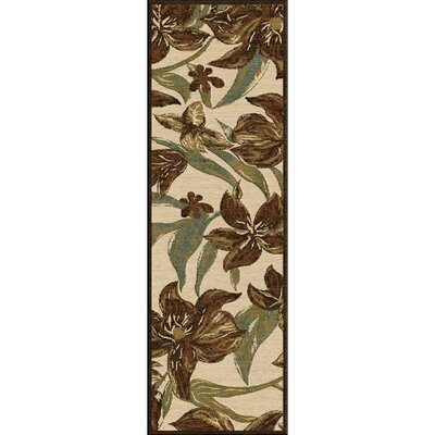 Cornerstone Indoor/Outdoor Area Rug Rug size: Runner 26 x 71