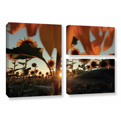 Sunflower Field 3 Piece Photographic Print on Wrapped Canvas Set